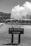 Tourists watching the Old Faithful erupting in Yellowstone Natio Royalty Free Stock Photography