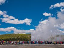Tourists watching Old Faithful geyser erupting in Yellowstone Stock Image