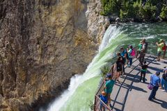 YELLOWSTONE NATIONAL PARK, WYOMING, USA - JULY 17, 2017: Tourists watching and taking pictures of Lower Yellowstone Falls. Grand C Stock Photos