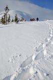 Tourists on winter walk Royalty Free Stock Photos