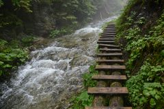 Slovak Paradise, Great White Water and a wooden way royalty free stock images