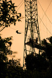 Tourists on zip line in Costa Rica. Silhoutte of tourists on zip line in Costa Rica stock image