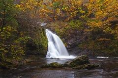Tourmakeady Waterfall Royalty Free Stock Photo