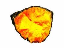 Tourmaline Polished Slice Royalty Free Stock Image