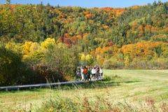 秋天在盖帽Tourmente全国野生生物地区 免版税库存照片