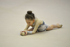 Tournament of rhythmic gymnastics Royalty Free Stock Images