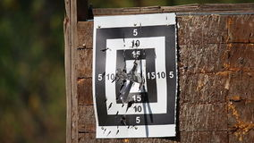 Tournament throwing knives at targets stock video footage
