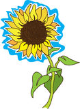 Tournesol Illustration Libre de Droits