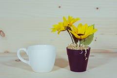 Tournesol dans un pot de fleurs et une tasse Photographie stock