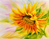 Tournesol, peinture à l'huile Photos libres de droits