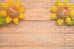 Tournesol sur la texture de mur de briques Image stock