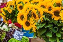 Tournesols au marché de l'agriculteur local Photo stock