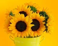 Tournesols dans le vase Photo stock