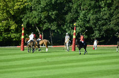 Tournoi de Sport_polo Photographie stock libre de droits