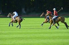 Tournoi de Sport_polo Photos stock