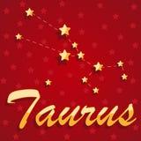 Touro da constelação sobre o fundo estrelado vermelho Imagem de Stock Royalty Free