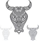 touros Fotografia de Stock