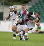 Touros da liga v Bradford do rugby dos Harlequins fotos de stock
