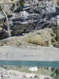 Tourquise stupefacente Oeschinnensee con le alpi svizzere Kandersteg Immagini Stock