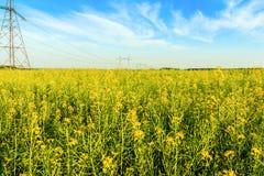 Tours à haute tension de transmission dans le domaine jaune Photos libres de droits