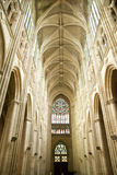 Tours Cathedral roof Royalty Free Stock Photo