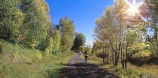 Tours d'un cycliste de femme en automne Image libre de droits