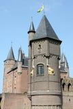 Tours de château Image stock