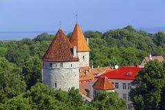 Tours de Tallinn, Estonie Image libre de droits
