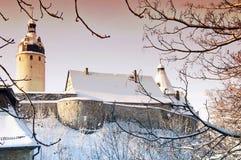 Tours du château à Altenburg Photographie stock