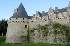 Tours et mur de château Image stock