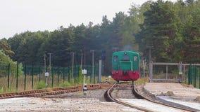 Tours locomotifs par chemin de fer Emplacements locomotifs sur Forest Railway banque de vidéos