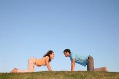 Tous les couples de fours Image stock