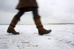 Tout l'hiver de choses Photos stock