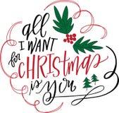 Tout que je veux pour Noël est vous Photo libre de droits