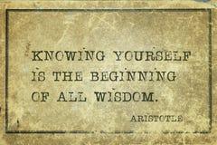 Toute la sagesse Aristote image libre de droits