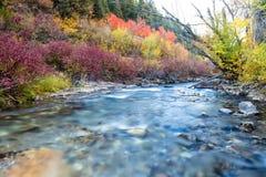 Toutes les couleurs sur le fleuve image libre de droits