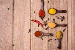 Toutes les poudre et herbe d'épice Photo libre de droits