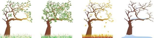 Toutes les saisons illustration de vecteur