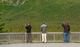 Toutists in Denali. Tourists taking photos and using binoculars in Denali national park Royalty Free Stock Images