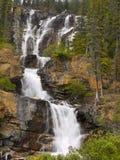 Tova faller Jasper National Park Royaltyfria Bilder