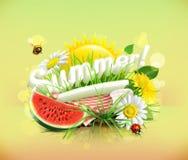 Tovaglia e sole dietro, erba, fiori della camomilla ed il da Fotografia Stock
