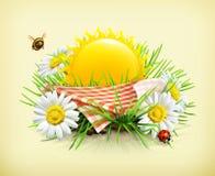 Tovaglia e sole dietro, erba, fiori della camomilla, una coccinella e un  illustrazione di stock