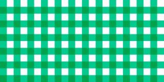 Tovaglia generale a quadretti a strisce del percalle di vettore Fondo verde bianco senza cuciture del modello del tovagliolo dell Fotografie Stock Libere da Diritti