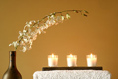 Tovaglioli, vaso, candele, fiori Immagini Stock Libere da Diritti