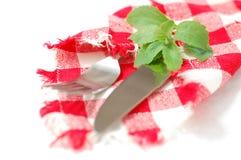 Tovagliolo Checkered, stevia e coltelleria immagine stock