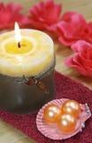 Tovagliolo, seashell, candela, rose Fotografia Stock Libera da Diritti