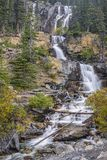 Tovaliten vikvattenfall Jasper National Park albertan Kanada royaltyfri bild