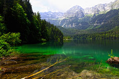 Tovel lake on alps Stock Image