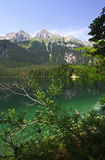 Tovel lake, italian alps Stock Photography
