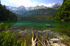 Tovel lake, italian alps Stock Images